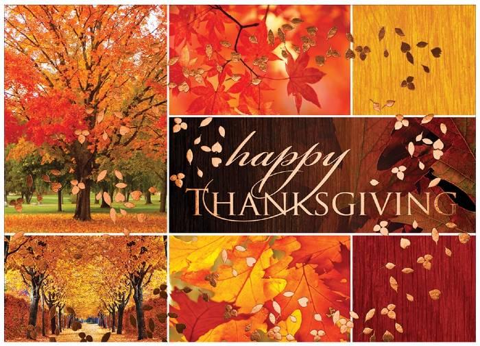 happy thanksgiving - leaf fall